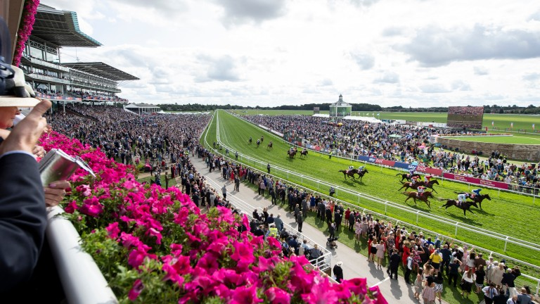 York: hosts the Listed Garrowby Stakes on Sunday