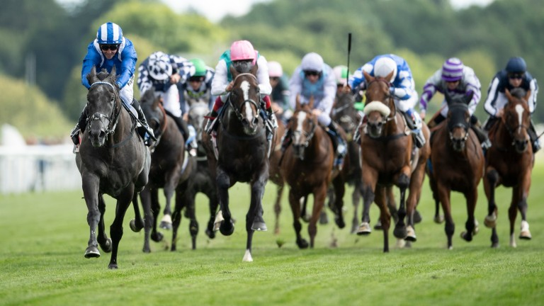 Sea The Lion (white cap, noseband) led home the Irish contingent in the Ebor