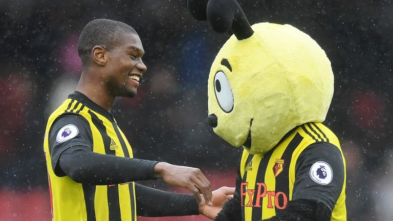Watford's Christian Kabasele celebrates with mascot Harry the Hornet