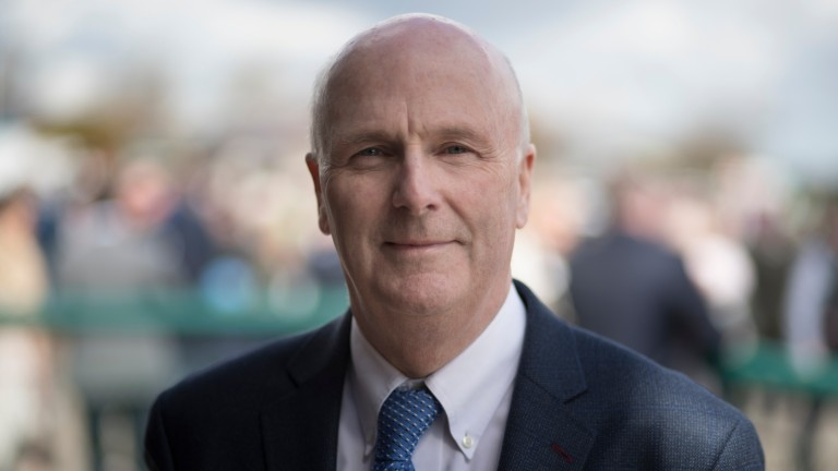 Denis Egan: the chief executive of the Irish Horseracing Regulatory Board has welcomed the new investigative powers granted by government