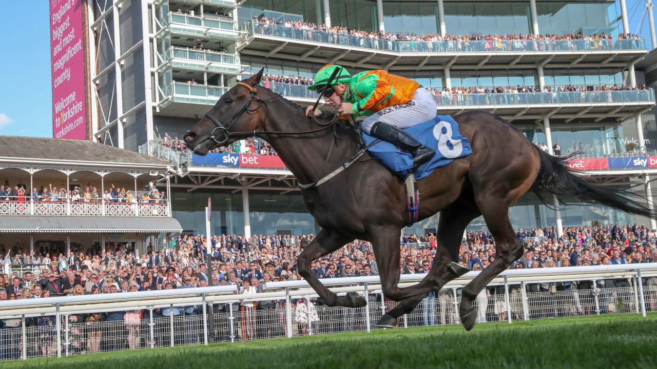 Gormley out to enhance title claims with seven Musselburgh