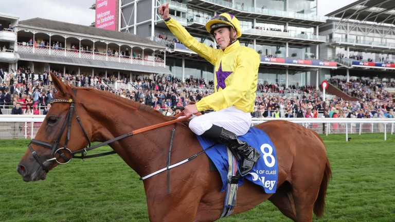 James Doyle celebrates Sea Of Class's impressive win in last week's Yorkshire Oaks