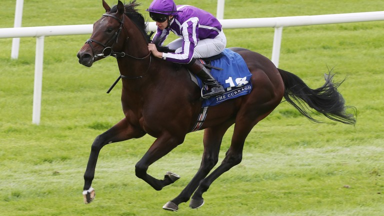 Ten Sovereigns, pictured winning on debut at the Curragh, is on course for a tilt at the Middle Park