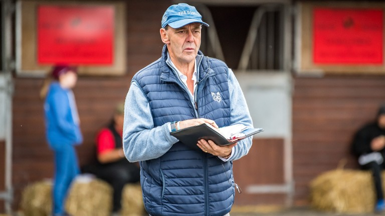 Angus Gold, Shadwell's racing manager, was active on day one of the Premier Yearling Sale