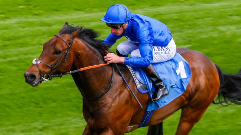 Harry Angel: has pleased Clive Cox in build-up to Haydock