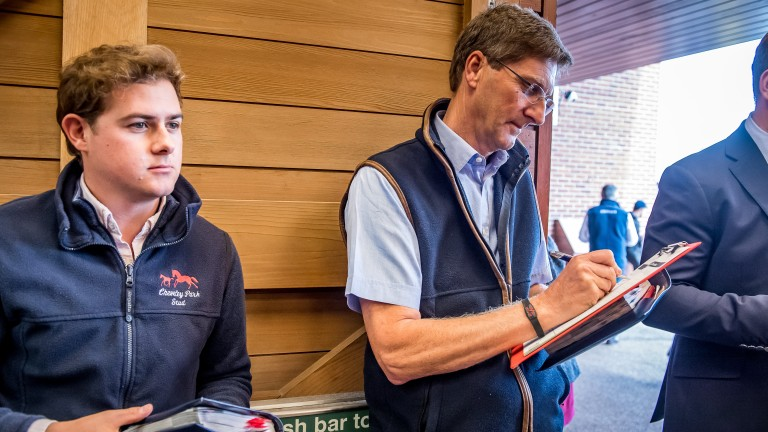 Cheveley Park's Chris Richardson signed the docket for lot 301 - A Dark Angel filly