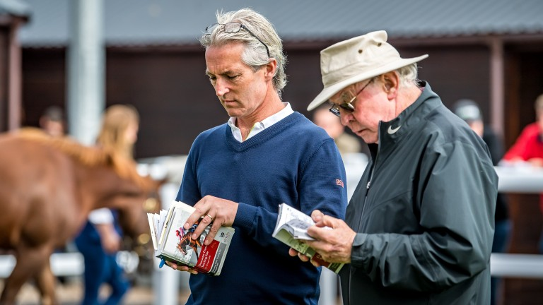 Two generations of expertise at Camas Park Stud, Tim Hyde jnr and Tim Hyde snr