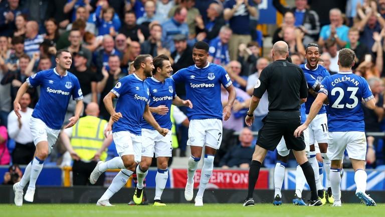 Theo Walcott celebrates scoring a goal for Everton against Southampton at Goodison Park