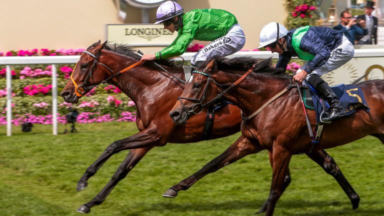 Arthur Kitt (green) and Richard Kingscote land the Chesham Stakes at Royal Ascot