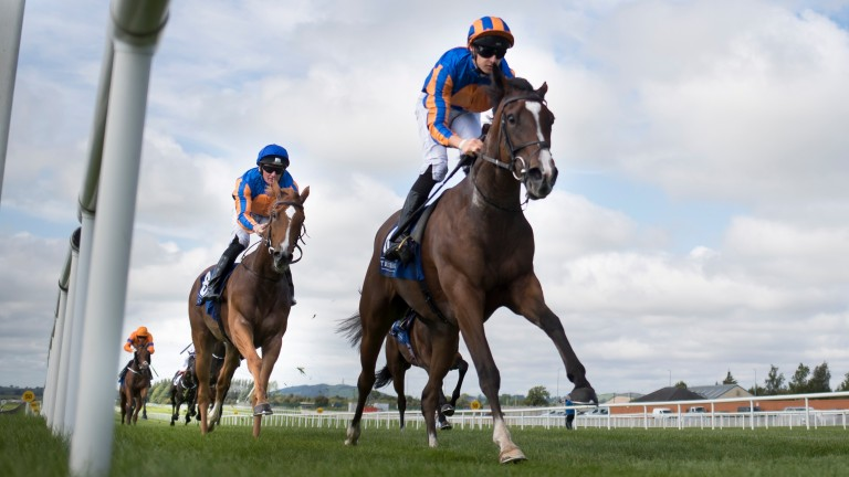 Just Wonderful holds an entry for the Rockfel Stakes - a race her dam won in 2011