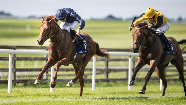 Sydney Opera House (left) gets off the mark at the Curragh