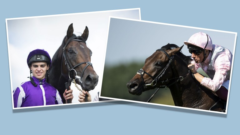 The pedigrees of Ten Sovereigns (left) and Too Darn Hot go under the scalpel