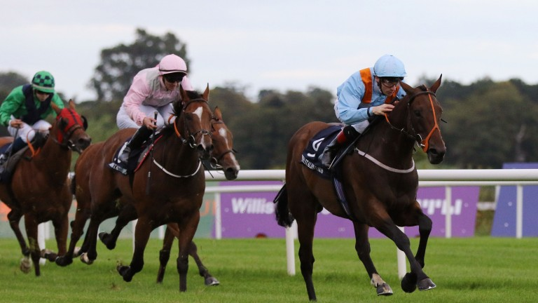 Burnt Sugar and Declan McDonogh winning at Leopardstown