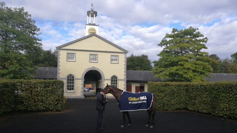 Aidan O'Brien and St Leger favourite Kew Gardens pose for the cameras at Ballydoyle on Tuesday morning