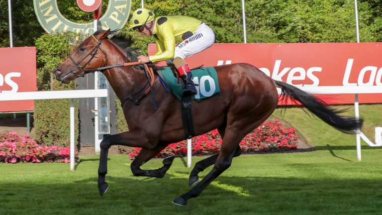 Three Comets: holds Group 1 entries