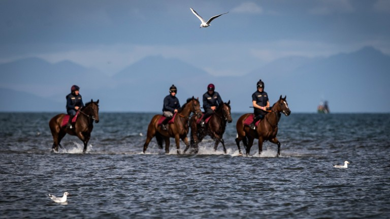 Gone for a swim: Ado McGuinness's string exercise in the Irish Sea