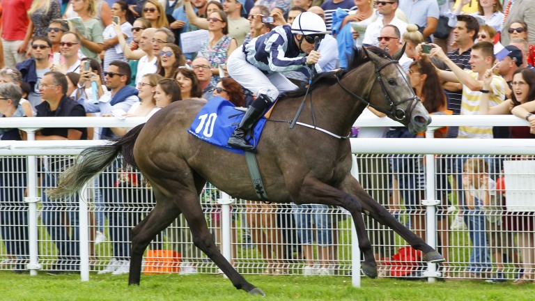 Alpha Centauri and Colm O'Donoghue on the trail of more Group 1 glory