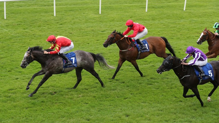 Speak In Colours and Donnacha O'Brien land the Phoenix Sprint Stakes at the Curragh