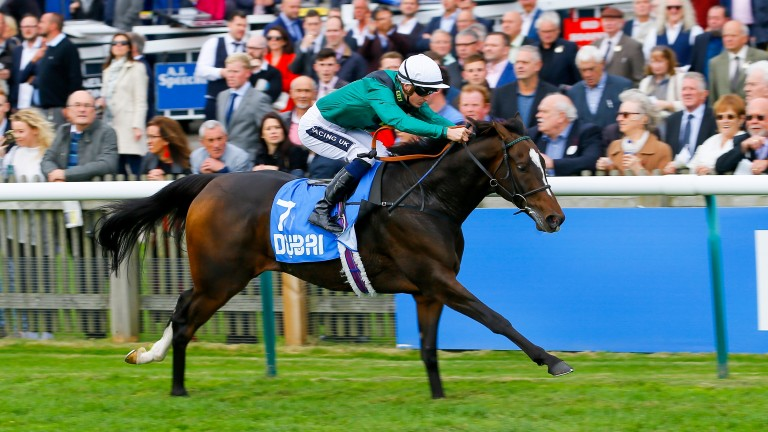 Limato and Harry Bentley in winning action at Newmarket last October