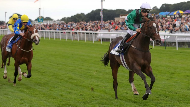 Limato and Harry Bentley win the Ryedale House Garrowby Stakes at York