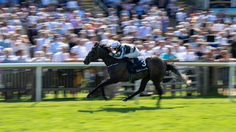 Alpha Centauri wins the Falmouth Stakes