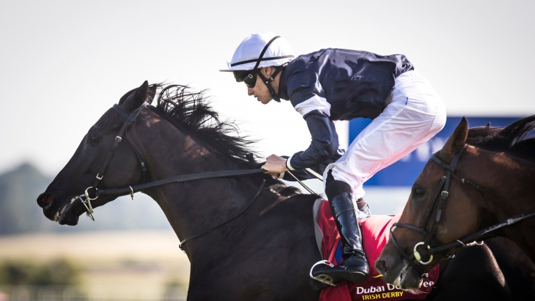 Latrobe: bids to complete the Irish Derby-Irish St Leger double