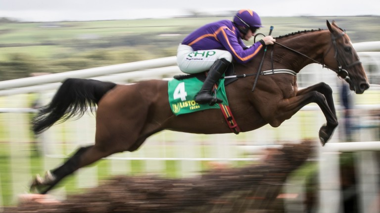 Wicklow Brave: bids for career win number 15