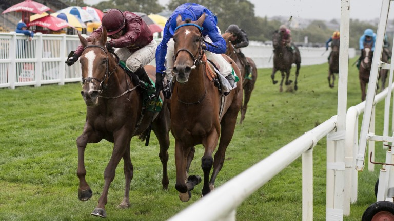 Ship Of Dreams (left) finishing second at Listed level at Listowel