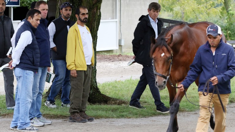 Sheikh Mohammed (yellow) and his team, including Simon Crisford (second right) and Charlie Appleby (third left), during inspections at the Keeneland September Sale