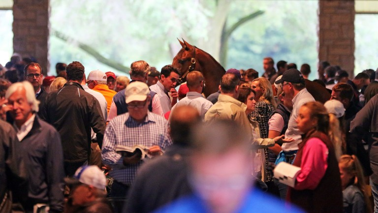 Book 1 of this year's Keeneland September Sale was extended to four days