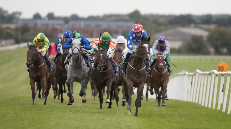 Racing takes place at Naas this evening where Old Glory looks one of the most interesting horses on display