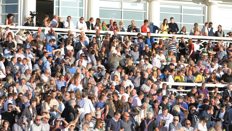 The crowd for the Star Sports Derby soaks up the June sunshine