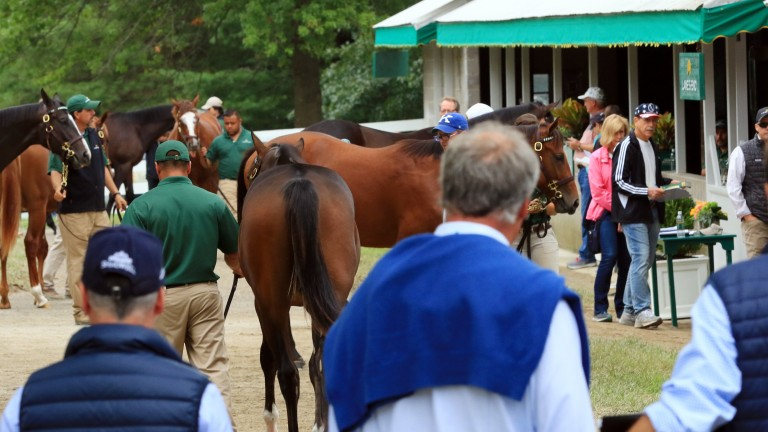 Competitive trade was reported across all levels of the market at Keeneland