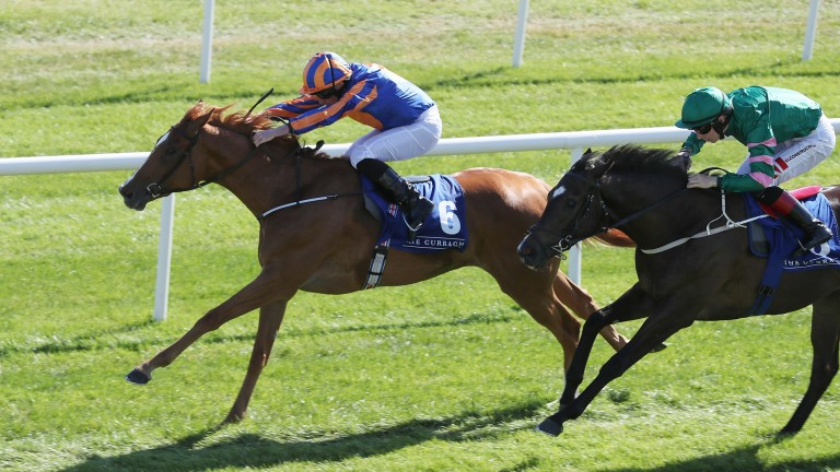 Peach Tree: second in a Group 3 at the Curragh last time out