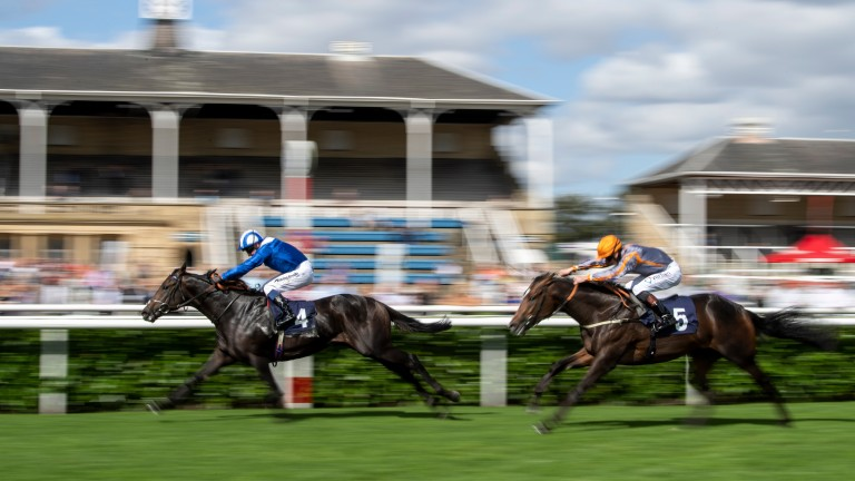 Khaadem: a smooth winner at Doncaster recently