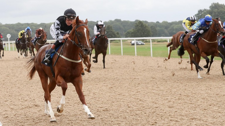 Louis Treize wins his maiden at Newcastle in July under Tom Queally