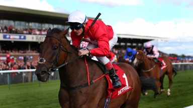 """""""At Haydock he didn't beat them, he annihilated them and he was pulling up 50 yards from the line."""""""