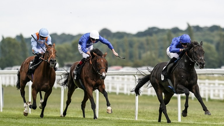 Walton Street (white cap) battles with St Leger hopeful Raymond Tusk (left) in the fight for minor honours behind Hamada at Newbury last month