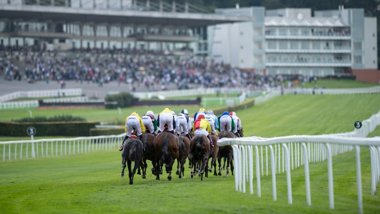 Sandown: holds Listed action on Wednesday