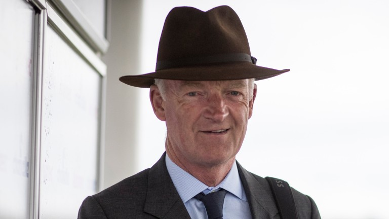 Willie Mullins: playing the numbers game in Irish Cesarewitch
