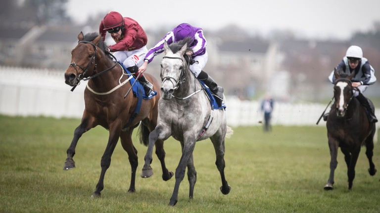 Capri (grey) and Ryan Moore get the better of Cannonball in the Alleged Stakes at Naas in April