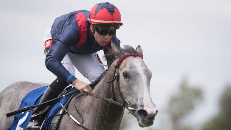 Angelic Light: wide-margin Curragh maiden winner is going places