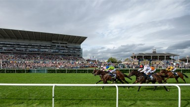 Just In Time (Martin Harley,white) beats Austrian School in the Mallard HandicapDoncaster 14.9.18 Pic: Edward Whitaker