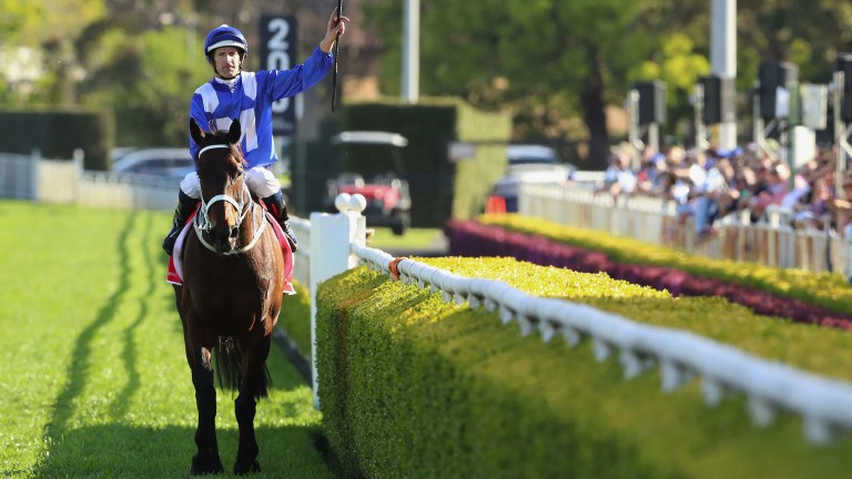 Hugh Bowman laps up the applause following Winx's victory in the Colgate Optic White