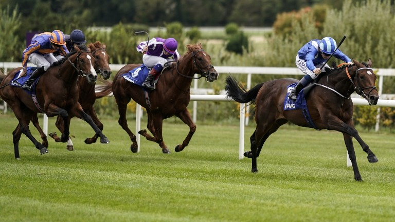 Madhmoon: has some excellent form to his name