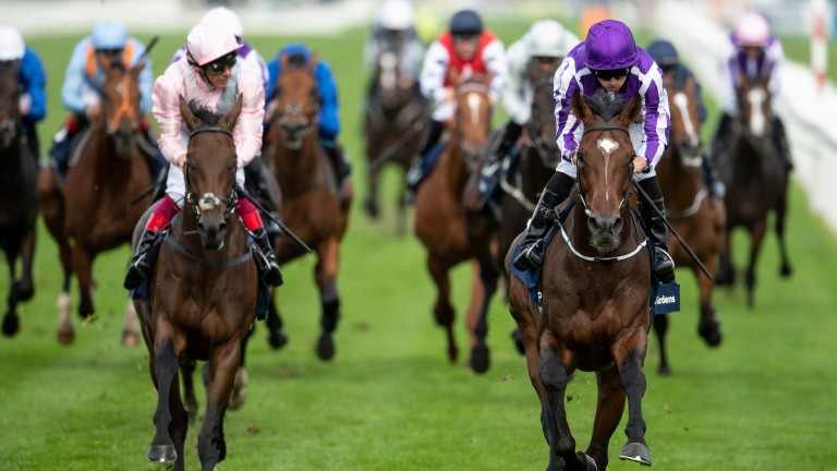 Kew Gardens (right): Leger winner on course for Ormonde Stakes at Chester