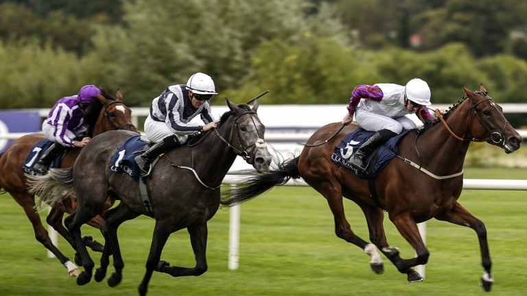 Laurens (right) finds plenty under pressure to win the Matron Stakes