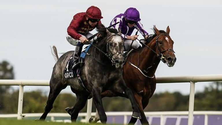 Saxon Warrior (right) loses out by a neck to Roaring Lion in a thrilling Irish Champion Stakes