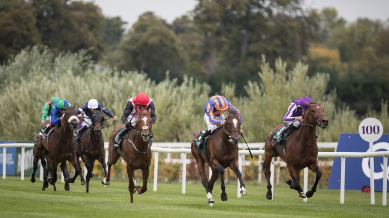 Head in front: Rostropovich lands the Group 3 Paddy's Reward Club Stakes from stablemate Giuseppe Garibaldi