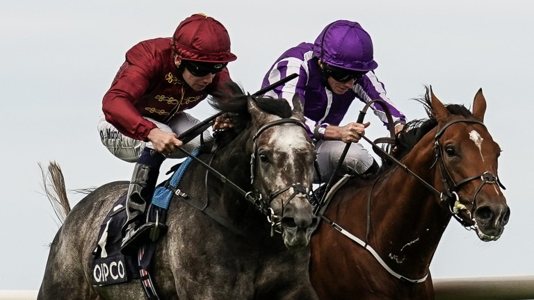 Roaring Lion (left) mows down Saxon Warrior in the closing stages of the Irish Champion Stakes